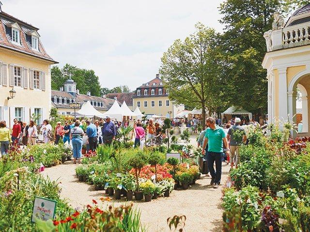 Gartenfest-Hanau_Pressefoto20191.jpg
