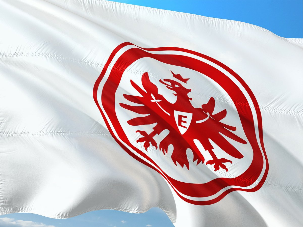 Eintracht Frankfurt Verein