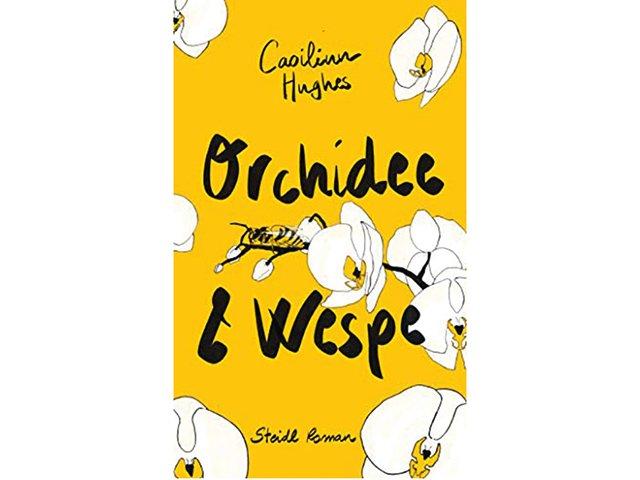 Wespe-und-Orchidee.jpg