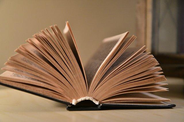 book-3163563_960_720.jpg