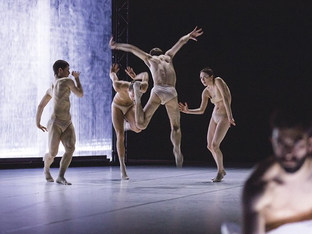 Dance-company.jpg