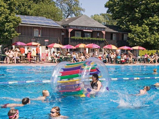 hoechster-schwimmverein-1893-ev-sommer-im-vereinsbad.jpg
