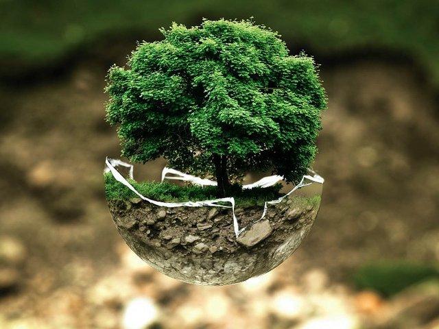 environmental-protection-683437_960_720.jpg